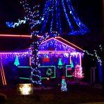 Dancing Christmas Lights I Want A Hippopotamus For Christmas Saint Joseph, Missouri