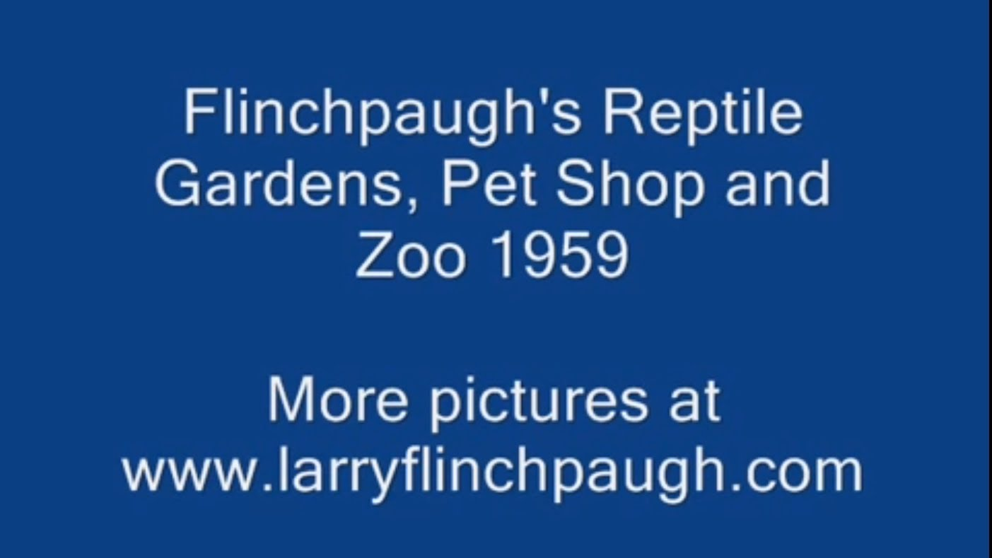 Flinchpaugh's Reptile Garden and Zoo  St. Joseph, Mo.