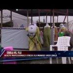 Flu vs. Ebola — which is deadlier?