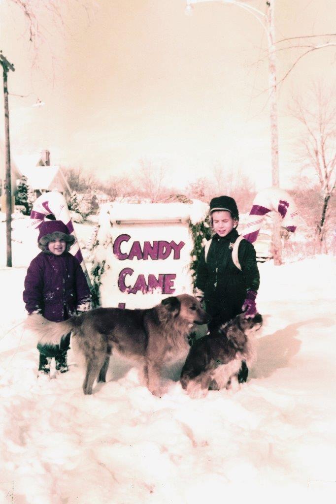 Candy Cane Lane 4