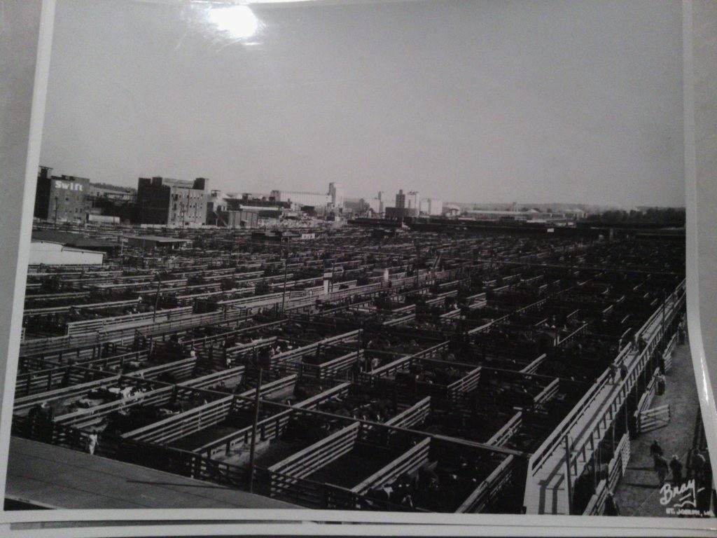 Great picture of the Stockyards